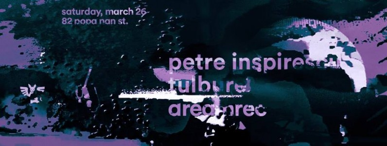 Guesthouse: Petre Inspirescu, Tulbure, Dreamrec @ Bucharest, Romania